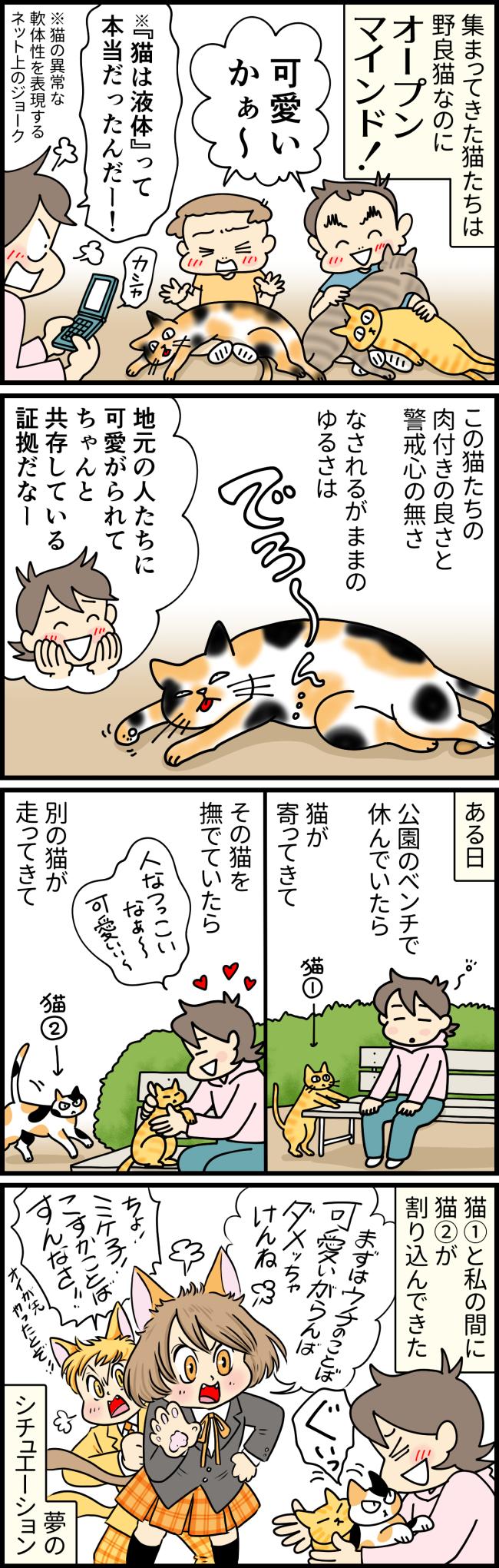 慣れすぎている佐世保の野良猫と触れ合う大原由軌子と子どもたち