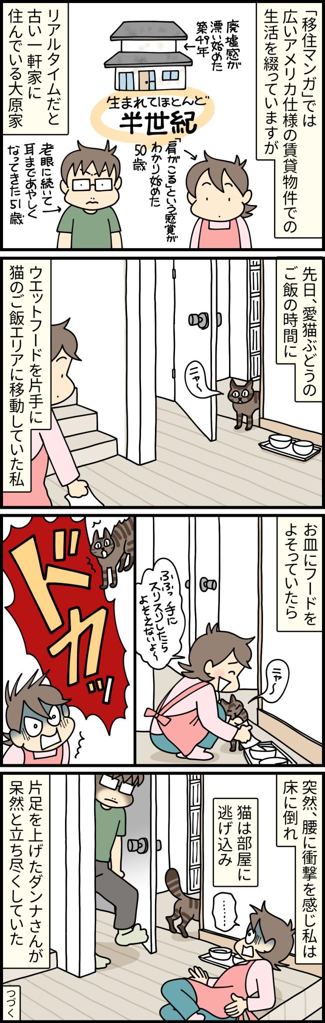猫のぶどうに餌をあげようと廊下にしゃがんでいたら突然ダンナさんから腰を蹴られた格好の大原由軌子