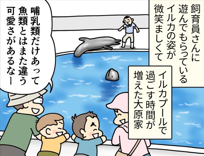 長崎県佐世保市の九十九島水族館海きららのイルカを眺めている大原由軌子とその家族