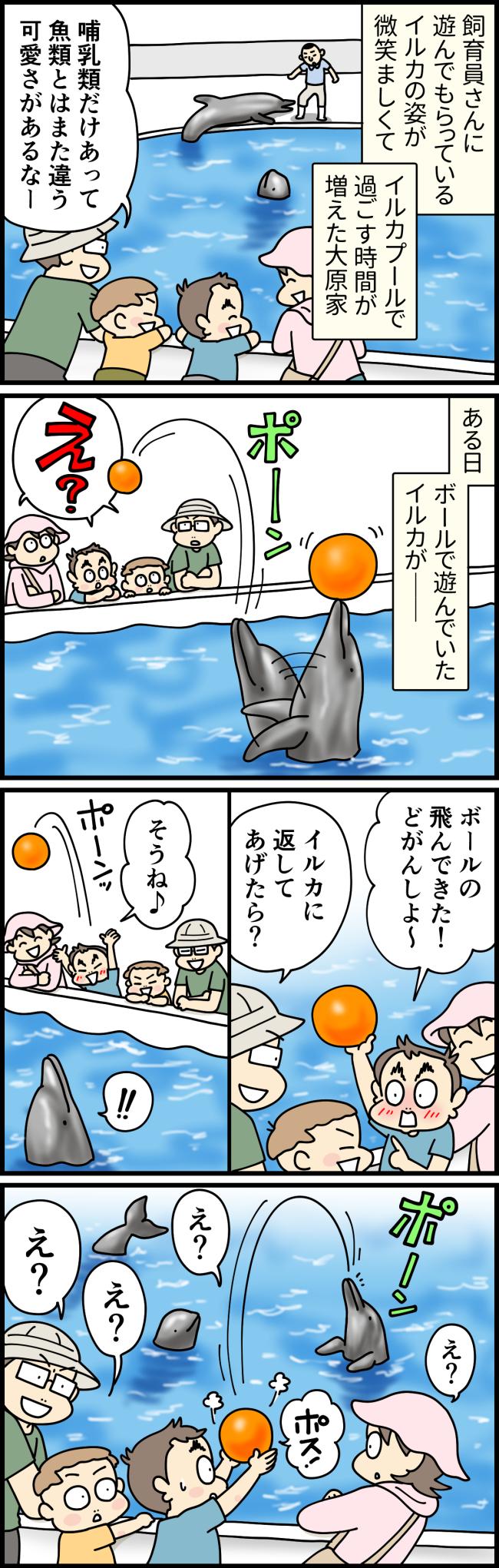 長崎県佐世保市の九十九島水族館海きららで、イルカとキャッチボールをするという機会に恵まれた大原由軌子とその家族