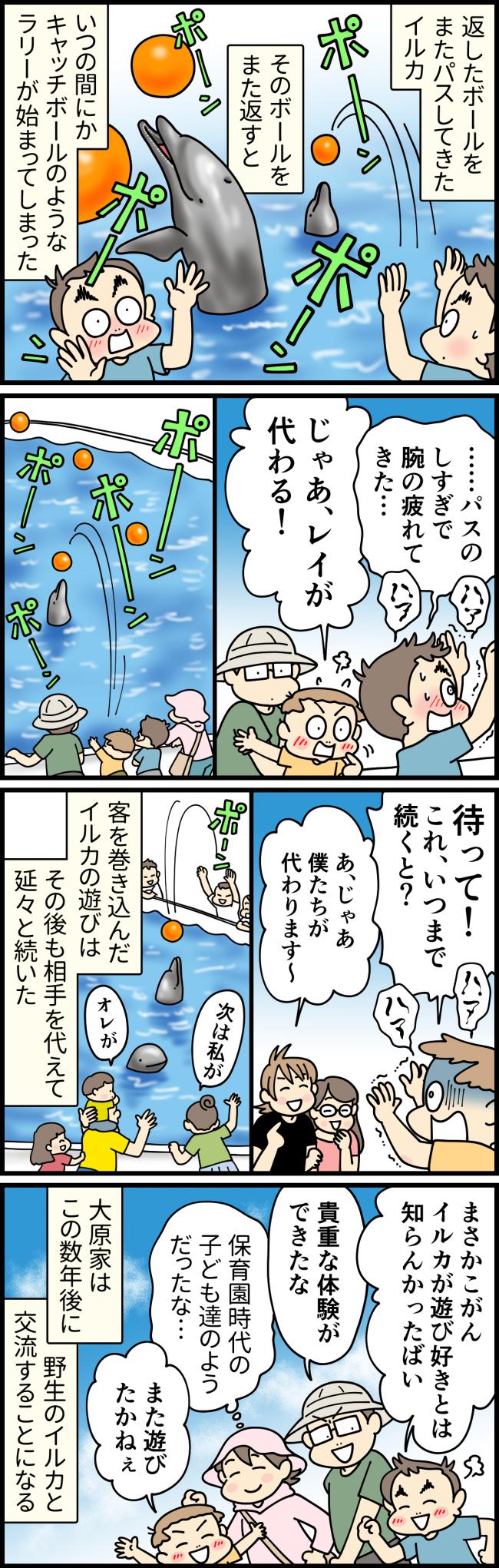 長崎県佐世保市の九十九島水族館海きららで、イルカとキャッチボールを楽しむ大原由軌子の子供たちと他の客たち